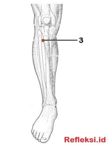 titik akupresur kesemutan di kaki