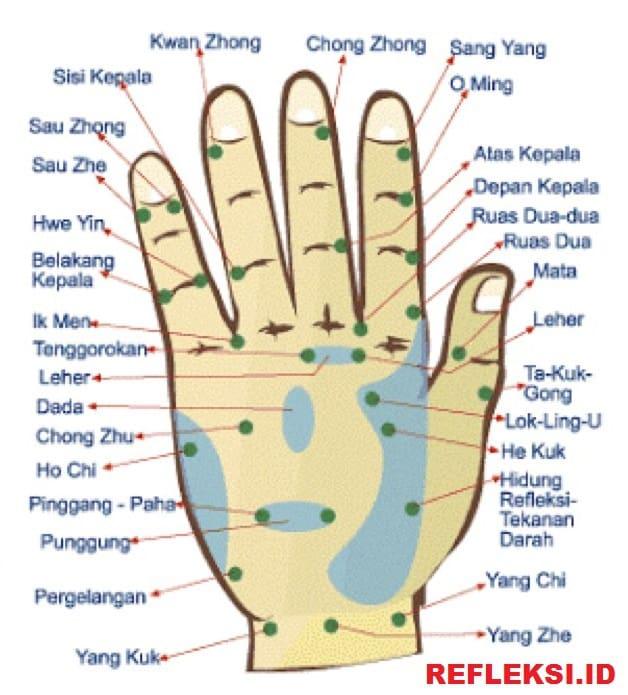 Titik Refleksi Punggung Tangan