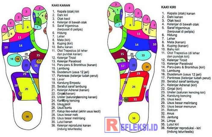Gambar peta refleksi pada telapak kaki