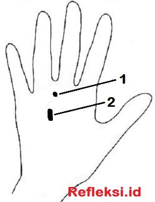 Titik refleksi batuk punggung tangan
