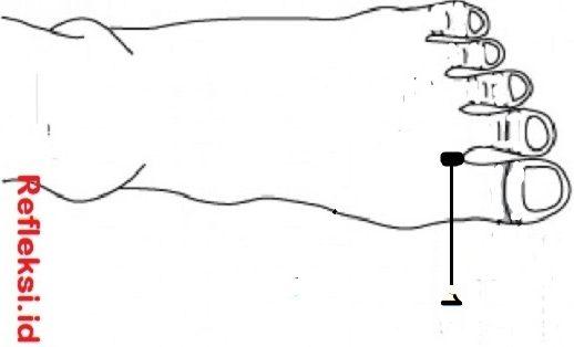 Titik Refleksi flu di kaki