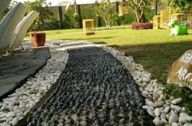 Batu refleksi