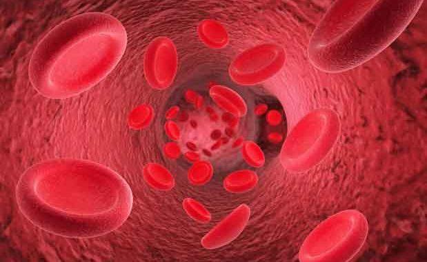 Peredaran darah lancar